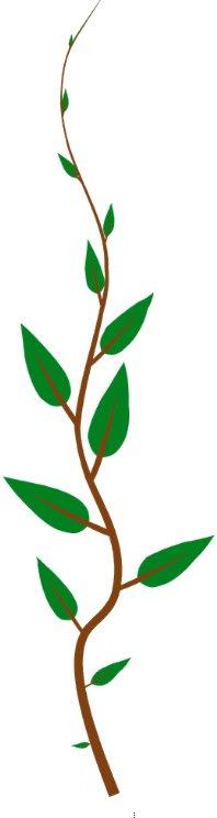 bedrijf biologisch steenwijkerland